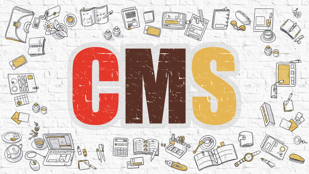 CMS - Content Management System - Concept. Modern Line Style Illustration. Multicolor CMS Drawn on White Brick Wall. Doodle Icons. Doodle Design Style of CMS Concept.